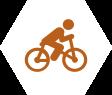Bharte Reizen | activiteiten fietsen