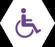 Bharte Reizen | activiteiten rolstoel